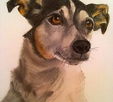Cute Little Jack Russell by DianeL