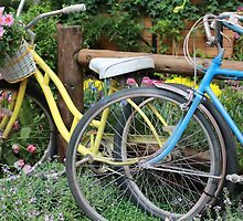 Bicycles by thebaum