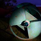 Green Buoy at Night by Lynn Wiles