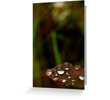 mother natures way Greeting Card