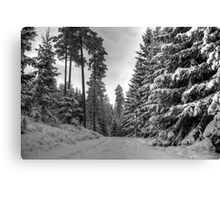 Winter in Forsheda's track II Canvas Print