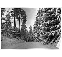 Winter in Forsheda's track II Poster
