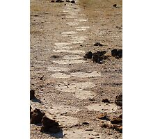 In giants footsteps Photographic Print