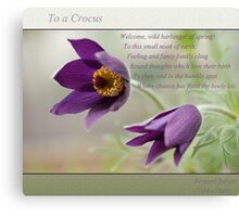 Ode to Spring ~ Crocus Canvas Print