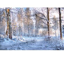 Winter in Forsheda's track I Photographic Print