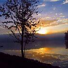 Misty Reflections by David Dehner