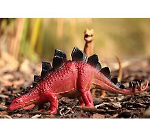 Toy Dinosaurs, Stegosaurus and T-Rex Photographic Print