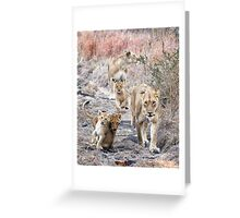 Family Walk Greeting Card