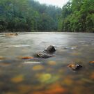 Phantom Valley Arthur river Meunna  by phillip wise