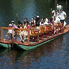 The Swan Boat  by John  Kapusta