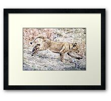 I Can Run ! Framed Print