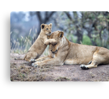 Guess Who ? Canvas Print