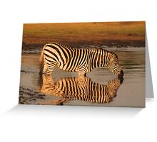 Sweet waters Greeting Card