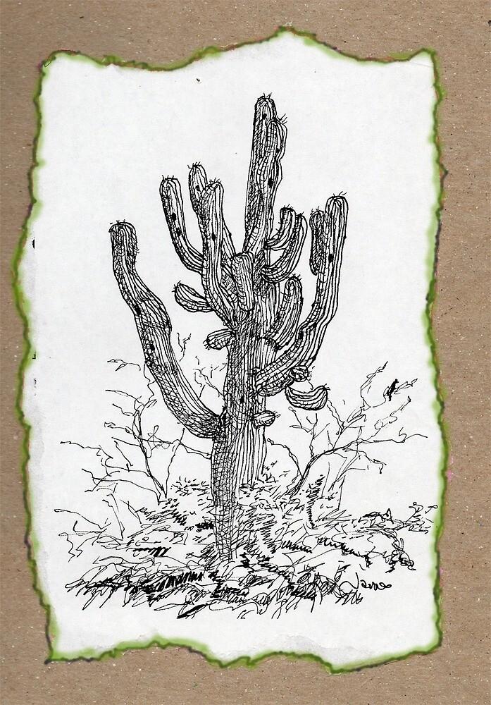 Giant Saguaro ARIZONA tee by James Lewis Hamilton