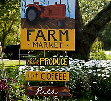 Fiddlehead Farm Market by phil decocco