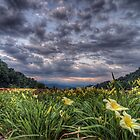 A Mid Summer Evening in Appalachia by James Hoffman
