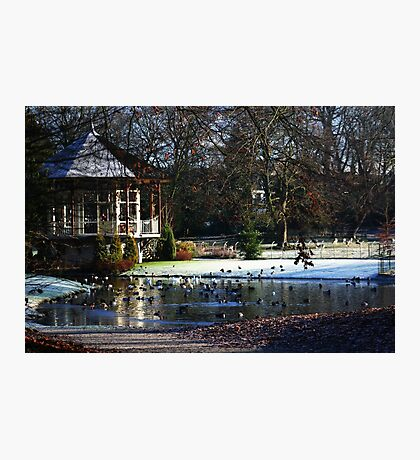 Rams Woerthe Tea House Photographic Print