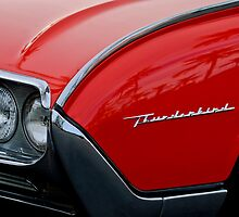 1961 Ford Thunderbird Headlight Emblem by Jill Reger