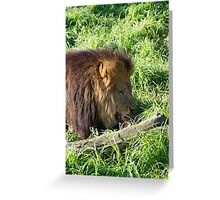Lions Do Eat Meat Greeting Card