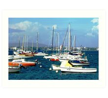 Resting in the waves at Williamstown Vic. Art Print