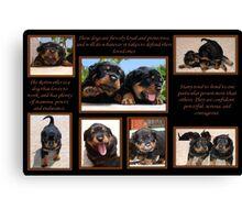 Rottweiler Memories Canvas Print