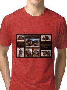 Rottweiler Memories Tri-blend T-Shirt