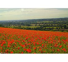 Poppy Fields Boze Down Photographic Print