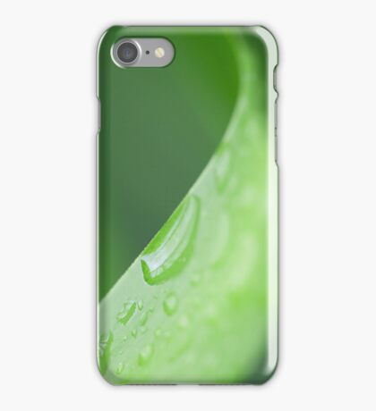 Green leaf on nature iPhone Case/Skin