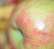 apple by Rachael Donegan