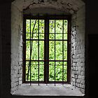 green window by Jari Hudd