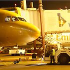 Bhadrainternational_airport_ground_handling(Ground Handling India) by Bhadra