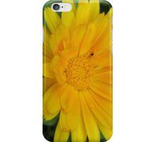 I phone cover summer iPhone Case/Skin
