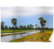 Water meadow Poster