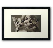 A friend like Mew Framed Print