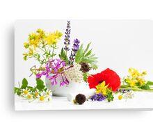 Gartenkräuter Canvas Print