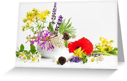 Gartenkräuter by Aviana