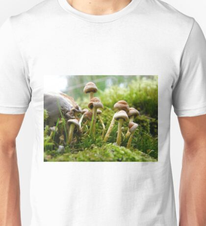 Little kids T-Shirt