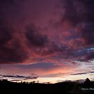 Painted Sky by DavesPhoto