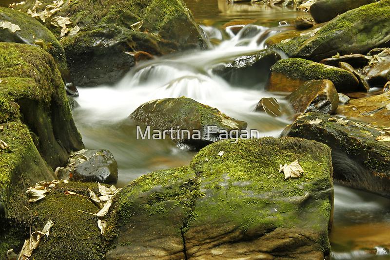 Water Flow at Torc  by Martina Fagan