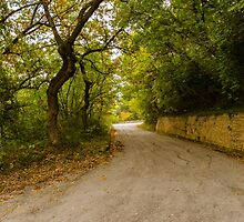 A winding road by Andrea Mazzocchetti