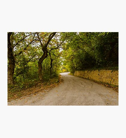 A winding road Photographic Print