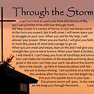 Through the Storm by Leon Heyns