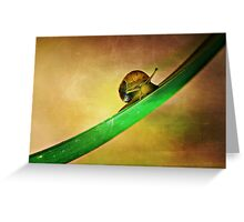 Slide Greeting Card
