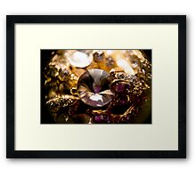 Diamonds and Gold SuperMacro 2 Framed Print