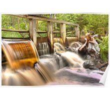 The honey water dam and the guardian – Honung vatten dammen och väktaren Poster