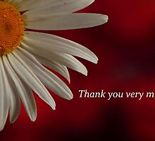 THANK YOU VERY MUCH by RoseMarie747