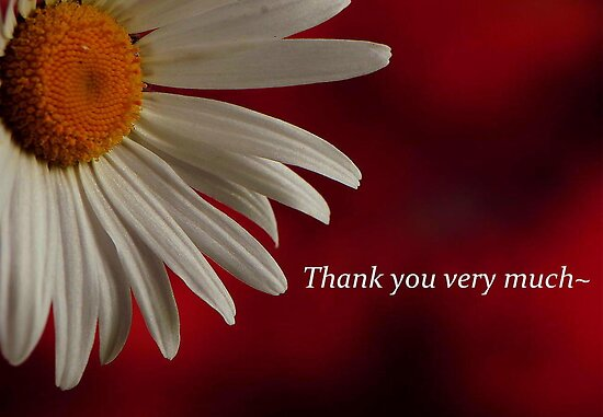 """THANK YOU VERY MUCH"""" by RoseMarie747 