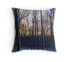 Sunset in the Woods - Green Lane Pennsylvania Throw Pillow
