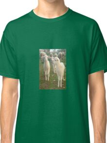 Three Tender Lambs and Five Pieces of Mutton Classic T-Shirt