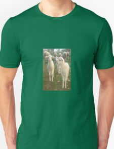 Three Tender Lambs and Five Pieces of Mutton T-Shirt